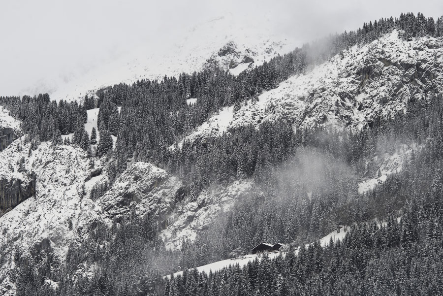 Abondance, Haute-Savoie, Alpes, hiver, vacherin