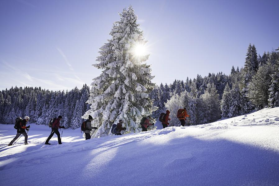 Bauges, PNR, Alpes