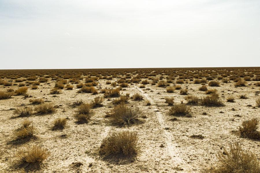 désert, steppe, Hauts plateaux, Maroc Oriental