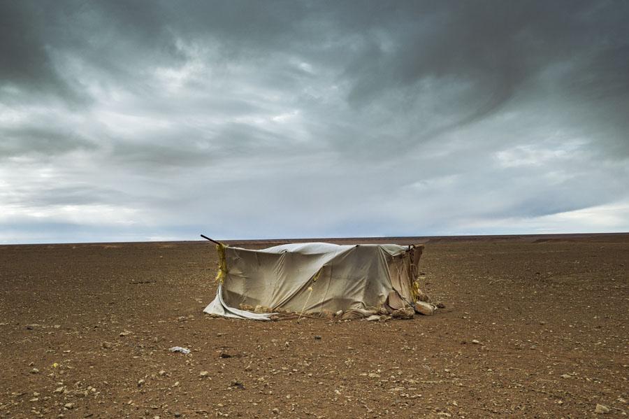 désert, chasse, tente, Hauts plateaux, Maroc Oriental