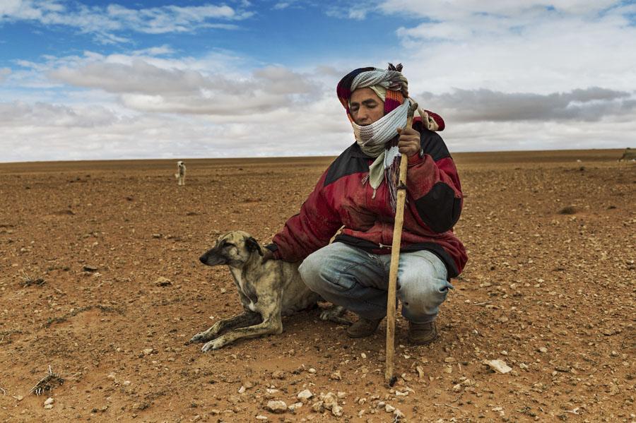désert, nomade, pasteur, berger, Hauts plateaux, Maroc Oriental