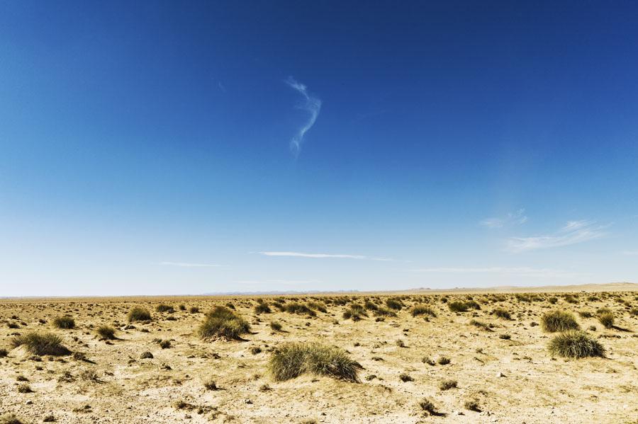 Hauts plateaux, Maroc Oriental, steppe