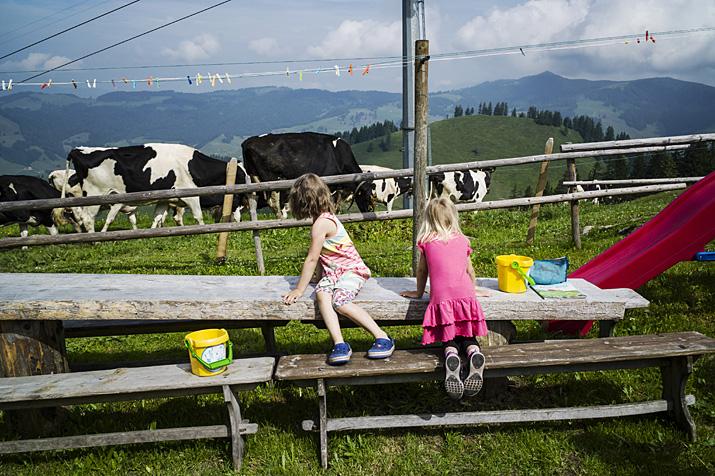 Suisse, canton de Fribourg, vallée du Motélon, alpage de Vounetz