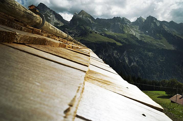 France, Haute-Savoie, Le Grand Bornand, alpage du Tavaillon