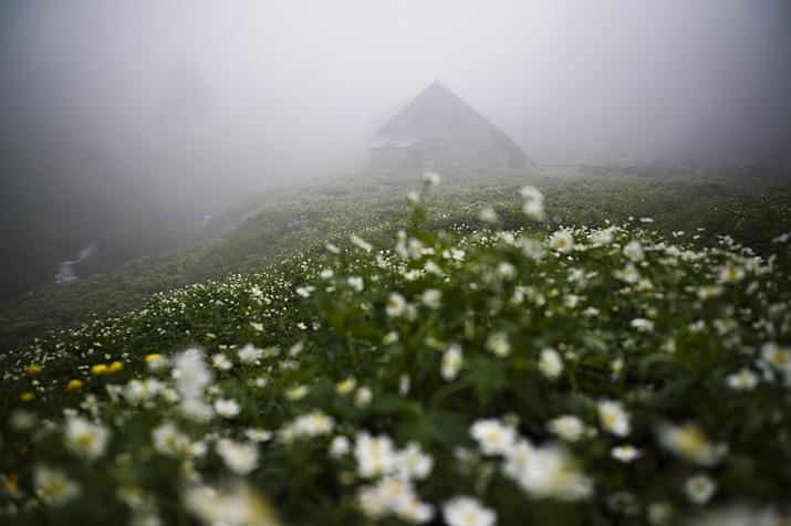 France, Haute-Savoie, Chablais