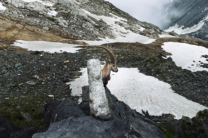 Suisse, Valais, Saas-Fee, cabane Britannia