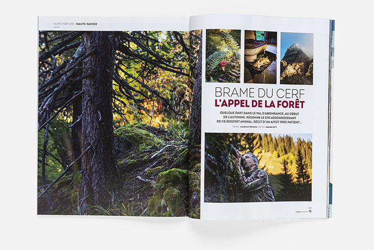 Alpes Magazine n°179 - Brame du cerf